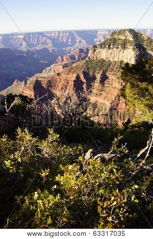 Early Morning Light On Rugged Canyon Ridges