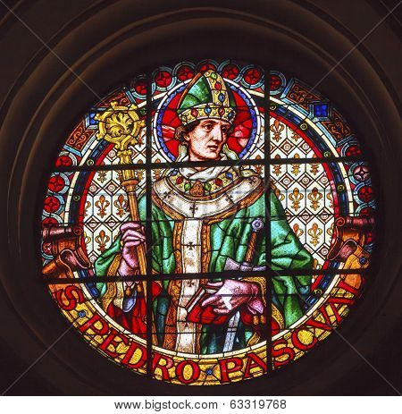 Saint Pedro Pacal Stained Glass Basilica Cathedral Andalusia Granada Spain