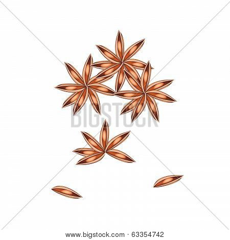 Stack Of Dried Star Anise On White Background