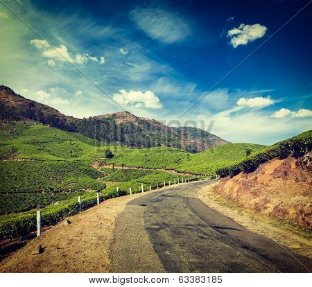 Vintage retro hipster style travel image of Kerala India travel background - road in green tea plantations in mountains in Munnar, Kerala, India