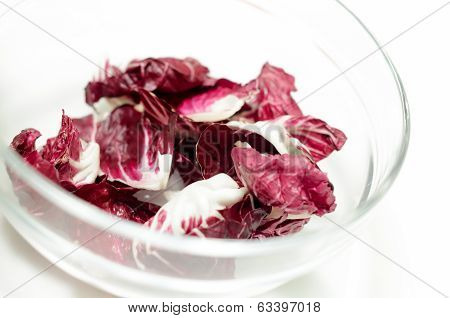 Radicchio salad in the bowl isolated