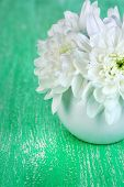 Beautiful chrysanthemum flowers in vase on wooden table close-up