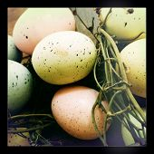 Instagram style image of speckled pastel eggs Easter decoration
