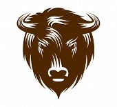 picture of bull head  - Illustration of buffalo head isolated on white background - JPG