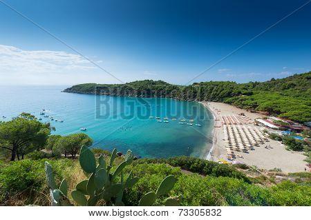 beach with sun umbrellas in wonderful bay of elba italy