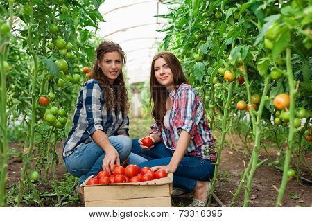Young smiling agriculture woman worker in front and colleague in back