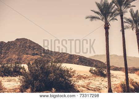 Palm Desert California