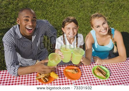 Mixed Race family toasting at picnic table