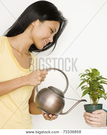 Pacific Islander woman watering potted plant