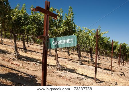 Cabernet Grape Sign