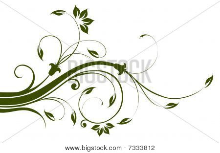 Flower And Vines Pattern