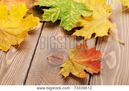Colorful maple leaves on woden background
