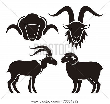 Goat and sheep icons