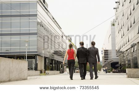 Rear view of multi-ethnic businesspeople walking