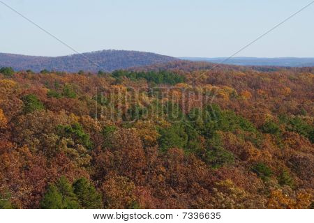 Hillside In The Fall