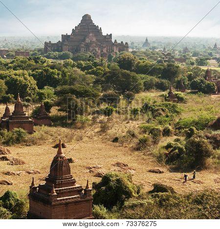 Buddhist Temples At Bagan Kingdom. Dhammayan Gyi Pagoda, Myanmar (burma)