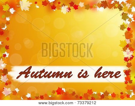Autumn is here background