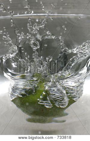 Lime Spashdown