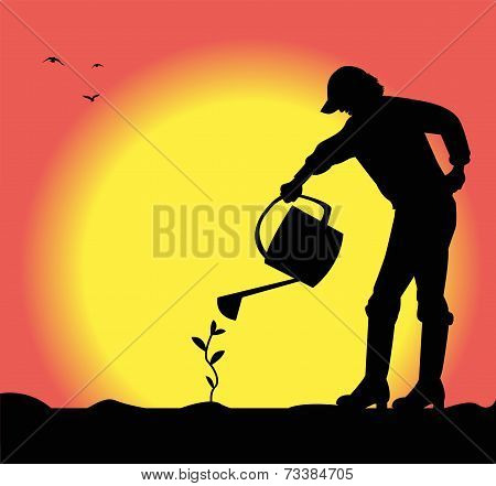 silhouette of a man watering