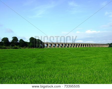 old fasioned railway bridge over a grassfield with blue sky in the background