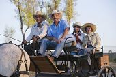 pic of carriage horse  - Hispanic family in horse - JPG