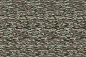 image of camouflage  - Olive brown military camouflage textile pattern - JPG