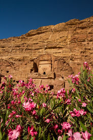 picture of camel-cart  - Facade of a beautiful building in the archaeological site of Petra Jordan with pink oleander flowers in the foreground - JPG