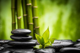 picture of bamboo  - zen basalt stones and bamboo  - JPG