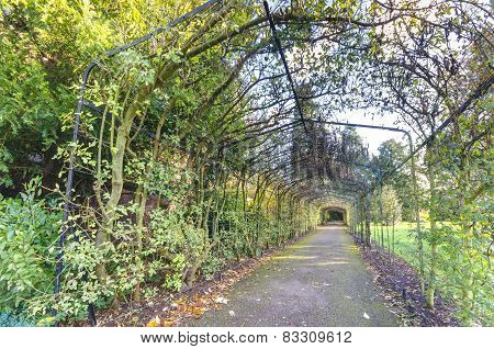Tunnel passage through Hampton Court Garden, London