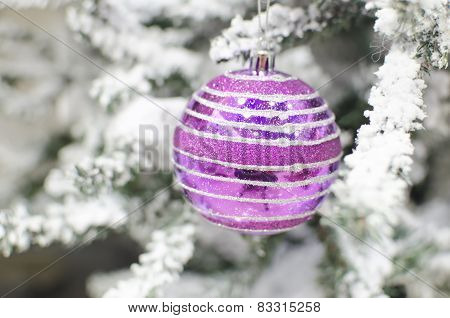 Purple ball on a Christmas tree with snow