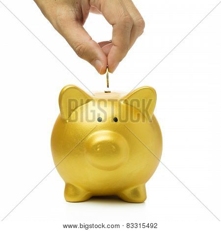 Putting Coin Into Piggy Bank