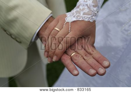 Just married - hands with rings