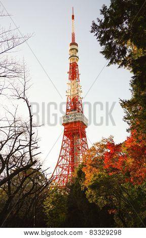 Tokyo Tower in Autumn
