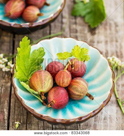 Fresh gooseberries and leaves in blue bowl