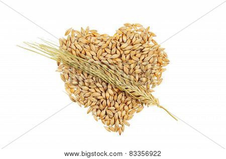 Barley Cupid Heart