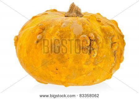 Yellow Decorative Pumpkin On A White Background