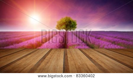 Stunning Lavender Field Landscape Summer Sunset With Single Tree On Horizon With Wooden Planks Floor
