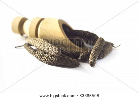 Long pepper isolated on white