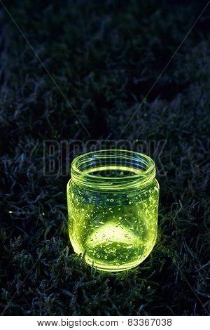 Glowing Jar On The Moss