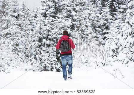 Young Man Hiking In Wintry Forest Landscape