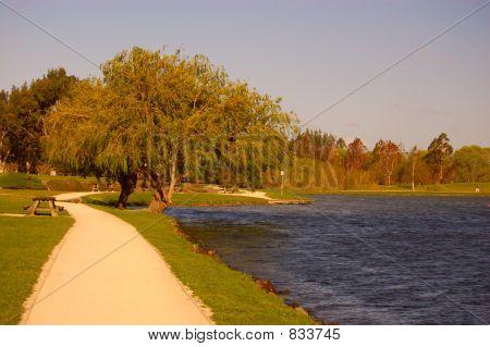 Path Around Lake