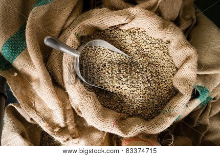 Raw Coffee Beans Seeds Bulk Burlap Sack Production Warehouse