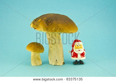 Fresh Mushroom Cep Boletus And Small Retro Santa Claus Toy