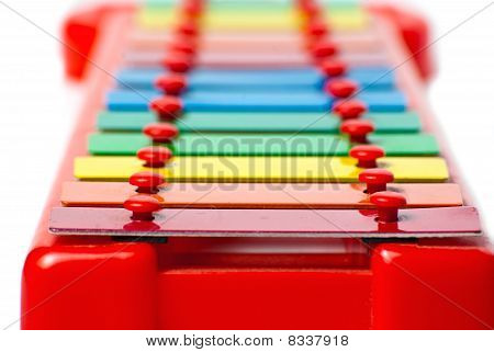 Xylophone Metallophone For Kids Focus On Foreground