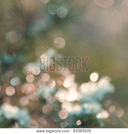 Greenish Festive Blur Background With Beautiful Boke