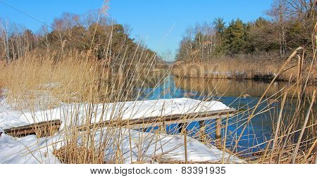 Moor Landscape With Birch Boardwalk In Winter