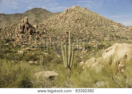 Arizona, desert valley landscape near Phoenix,Scottsdale,USA