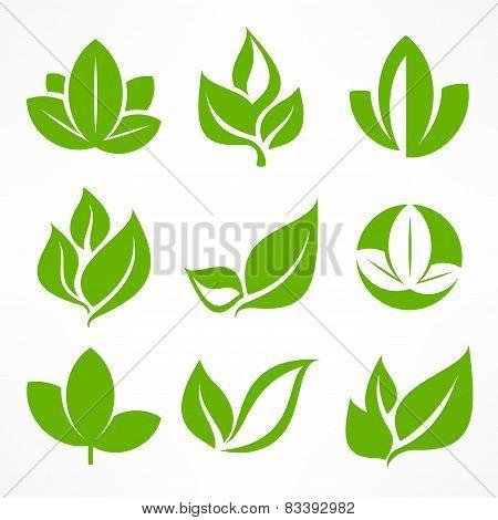 Green Leaf Signs