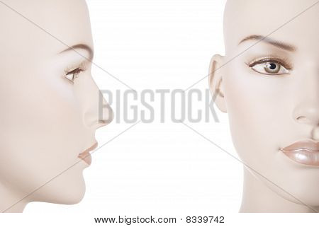 Female Manneauin Face | Studio Isolated