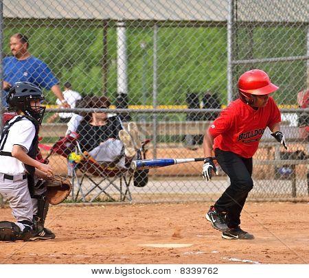 Boys Baseball Homeplate Action
